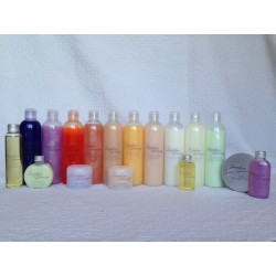 Pack 10 shampoings 250 ml